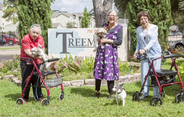 Treemont_assisted_living_residents_houston_tx_enjoy_companionship