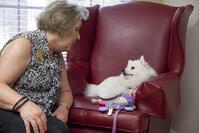 Sophie_the_show_and_therapy_dog_in_assisted_living_houston_tx