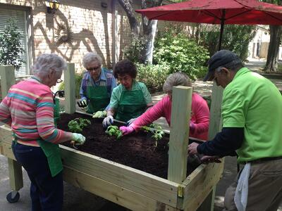 Treemont_assisted_living_houston_activities_gardening_planter